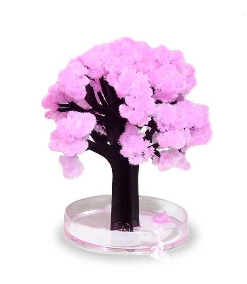 Magic Sakura - Kirschblüten